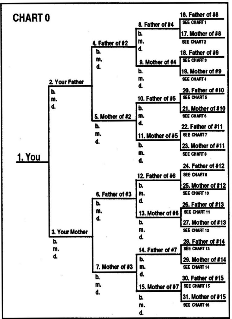 Tracing your family tree serendipity